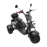 Электроскутер CityCoco SkyBoard Trike BR40-3000 PRO